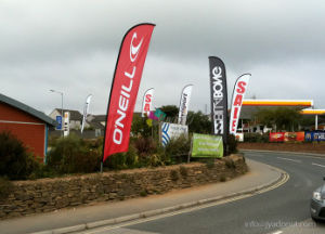 Outdoor Advertising Beach Wind Flag Banner Display pictures & photos