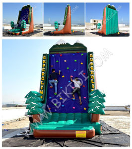 Popular Inflatable Rock Climbing Wall/Large Inflatable Climbing Games B6068 pictures & photos