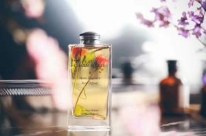 Custom Glass Perfume Transparent Bottle with Rubber Plug pictures & photos