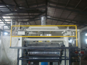 New Design Pet Sheet Making Machine pictures & photos