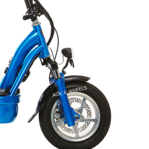 1000W Motor Foldable Balance Electric Scooter with Disk Brakes pictures & photos