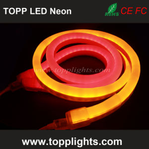 Underwater IP67 Rating LED Neon Flex Professional pictures & photos
