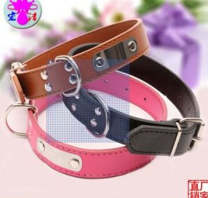 Pet Products Small Dog Cat Fashion Color Collar (C015) pictures & photos