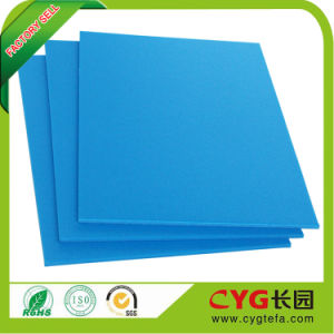 Colored Foam Sheets PE Foam Manufacturers pictures & photos