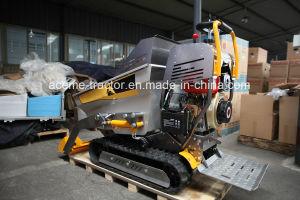 Italian Design Diesel Engine Mini Dumper Track, Cargo Track, Light Track pictures & photos