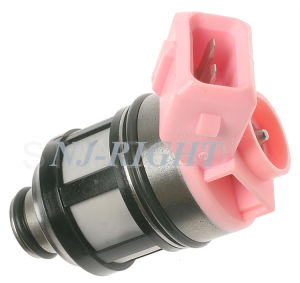 DELPHI Fuel Injector (FJ110) for Nissan pictures & photos