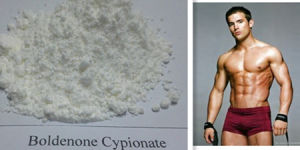 Best Quality Oral and Injections Boldenone Cypionate CAS: 106505-90-2 pictures & photos