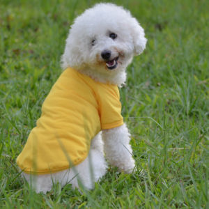 Pet Clothes Round Collar Pure Color T-Shirt Cotton Pet Products pictures & photos