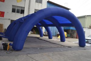 Promotional Inflatable Advertisement Tents for Event pictures & photos