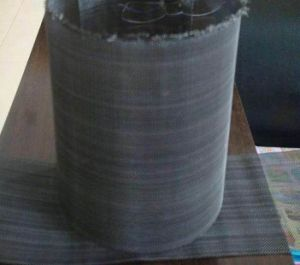 Epoxy Coated Wire Mesh/Black Wire Mesh/Black Iron Woven Cloth pictures & photos