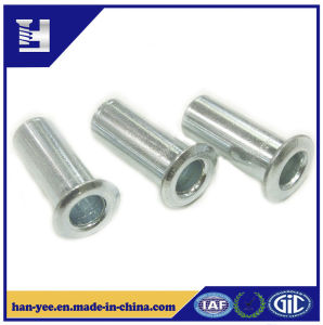 Hollow Steel Rivet for Auto Parts and Pipe pictures & photos