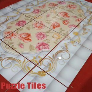 Modern Decorative Tile for Interior Flooring/Hall Floor Pattern Tiles pictures & photos