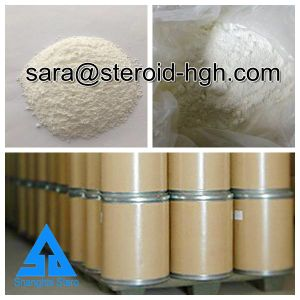 Topical Local Anesthetics Raw Powder Benzocaine for Pain Relieve pictures & photos