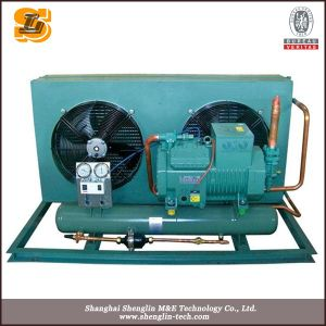 Low Temperature Box Type Air Cooled Condensing Unit pictures & photos