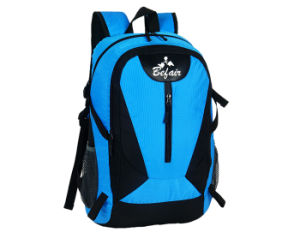 Vintage Stylish Nice Backpacks for Women and College (BH-NH-16030-2) pictures & photos