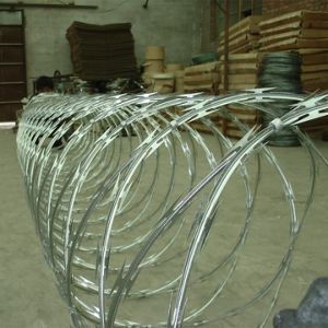 Hot-Dipped Galvanized Razor Barbed Wire/Concertina Wire pictures & photos