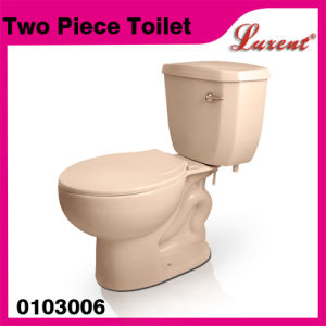 Ceramic Jet System with Seat Custom Size Bone Color Two Piece Toilet