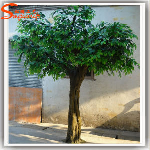 Hot Sale Decoration Artificial Ficus Tree pictures & photos