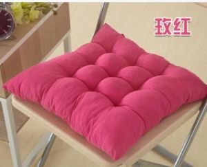 Factory Polyester Outdoor & Indoor Seat Chair Cushion pictures & photos
