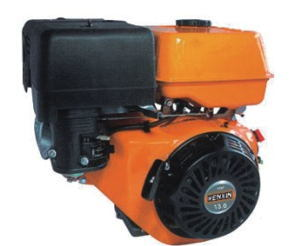 Gasoline Engine pictures & photos