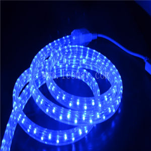 Christmas Lighting 3 Wire Flat LED Rope with Ce, RoHS pictures & photos