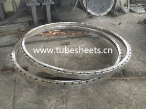 Forged Stainless Steel Flange pictures & photos