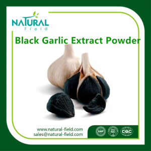 Natural Herb Extracts Black Garlic Powder, Black Garlic Extract, Black Garlic Extract Powder pictures & photos