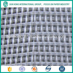 Single Layer Polyester Forming Fabrics Suitable for Cultural Paper pictures & photos