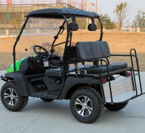4 Passenger Gasoline Type Golf Cart for Sale pictures & photos