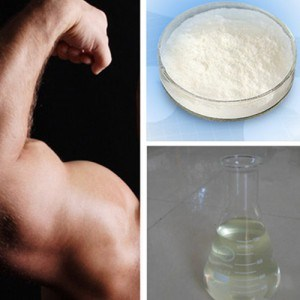 Raw Material Steroid Hormone Powder Testosterone Propionate pictures & photos
