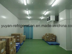 Cold Room Walking in Freezer pictures & photos