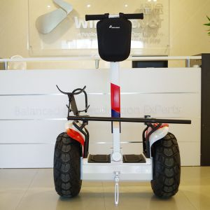 Wind Rover Factory Price Self Balancing Electric Golf Scooter pictures & photos