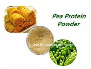 Distributor High Protein Foods Non-GMO Pea Protein Powder 80% for Weight Loss pictures & photos