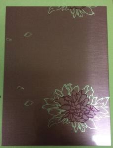 Steel Sheet, New Design Door/Side Panel for Samsung Use pictures & photos
