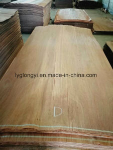 Gurjan Veneer for Plywood Core