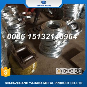 Electro Galvanized Wire Binding Wire Iron Wire pictures & photos