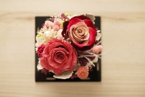 Ivenran Gift Box Preserved Fresh Flower for Car Decoration Gift pictures & photos