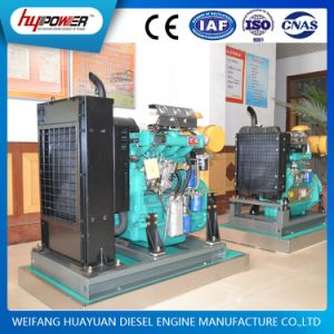 Factory Price for Weifang 50HP Turbocharged 495zd Engine pictures & photos