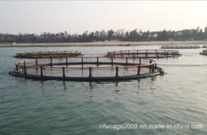 2016 Hot Sales Circular Fish Cage Aquaculture Farming Cages Fish Farming Cage pictures & photos