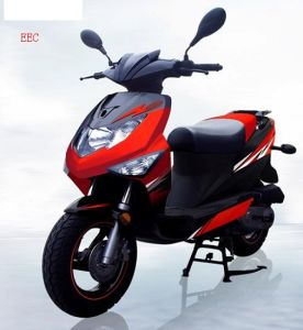 EEC Scooter (TY50QT-12G)
