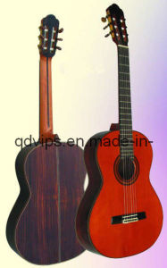 Solid Spruce Top Solid Rosewood Back and Side Classical Guitar Cg-910