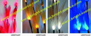 LED Natural Dried Flower (LDH071107-10)