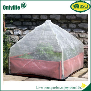 Onlylife Pop up Mini Tunnel Garden Greenhouse with Plastic/Film pictures & photos