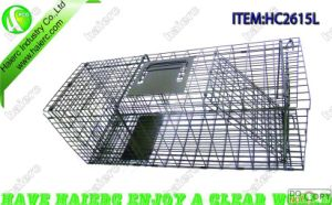 Foldable Animal Trap Cage (HC2615L)