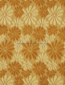High and Low Loop Pile Tufted PP Jacquard Wall to Wall Carpet (8A1 Series) pictures & photos