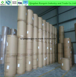 Single Side PE Coated Paper for Fast Food Packaging pictures & photos