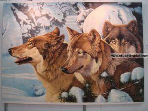 Animal Oil Paintings On Canvas (T99)