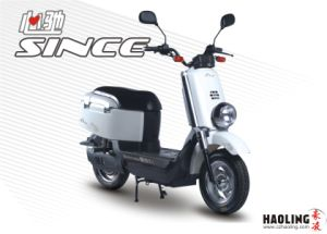 Fashionable Electric Scooter (HLES16-260)