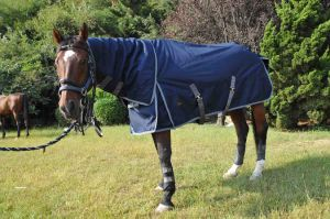 Freestyle 1200d Detachable -Neck Heavyweight Turnout Rug, Navy/Grey (NEW-04) pictures & photos