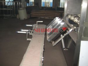 Automatic Barrel Feeding Machine (ST) pictures & photos